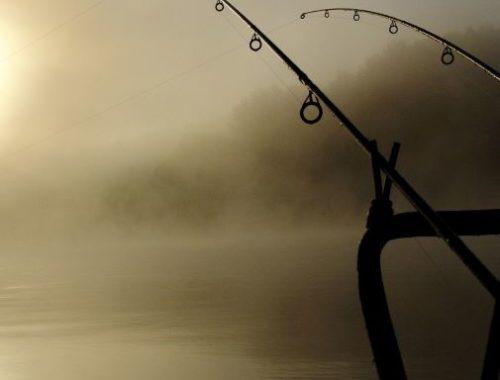 obrazek przedstawiający wędki i jezioro we mgle